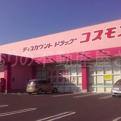 ディスカウントドラッグコスモス宮崎空港店(周辺)