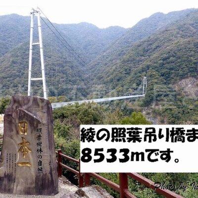 綾 照葉の吊り橋(周辺)